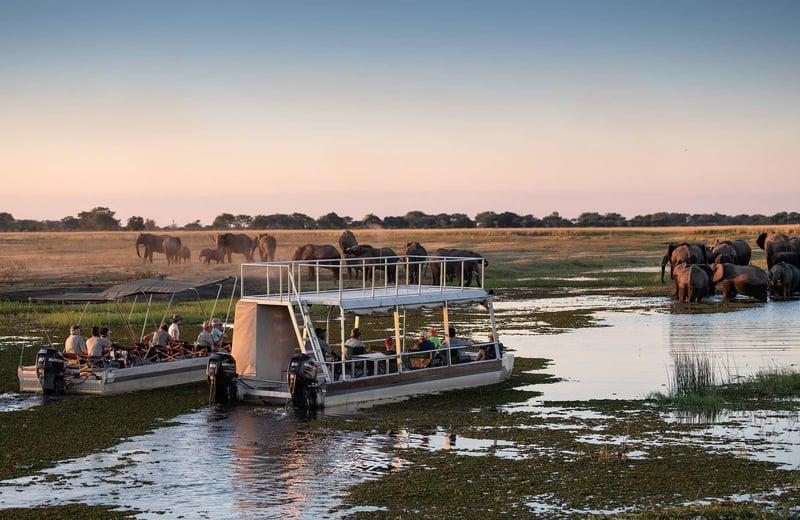 Zambezi Experience (9)