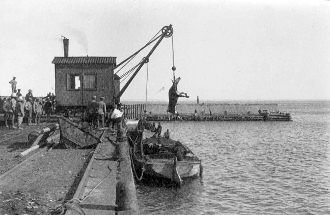 Cattle is brought ashore at the breakwater in Swakopmund – as an alternative to the expensive harbour in Walvis Bay (as shown on the stamp).  Source: National Archives