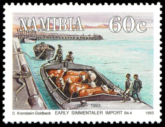Early Simmentaler import, issued in 1993, artist: Carola Kronsbein-Goldbeck