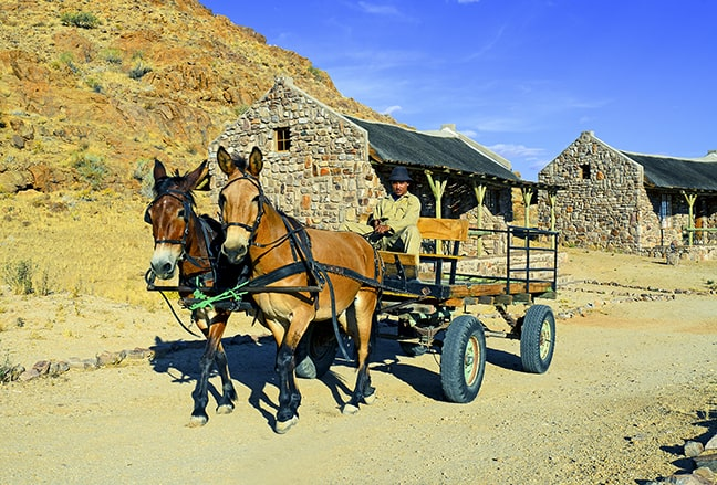 The donkey cart in the Canyon Village is used for transporting luggage. (Photo: Canyon Village)