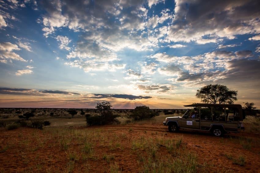 Explore the Gondwana Kalahari Park on the sunset drive