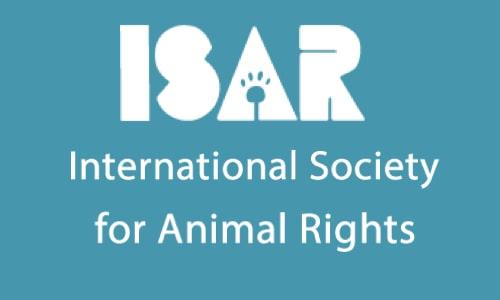 Rights to http://www.animalstodayradio.com/
