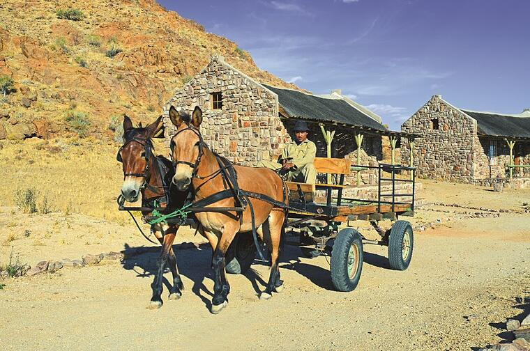 Donkey Cart in Canyon Village, Namibia