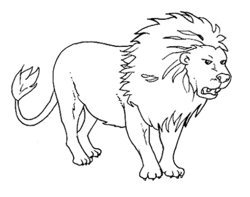 Coloring-pages-of-animals-that-hibernate