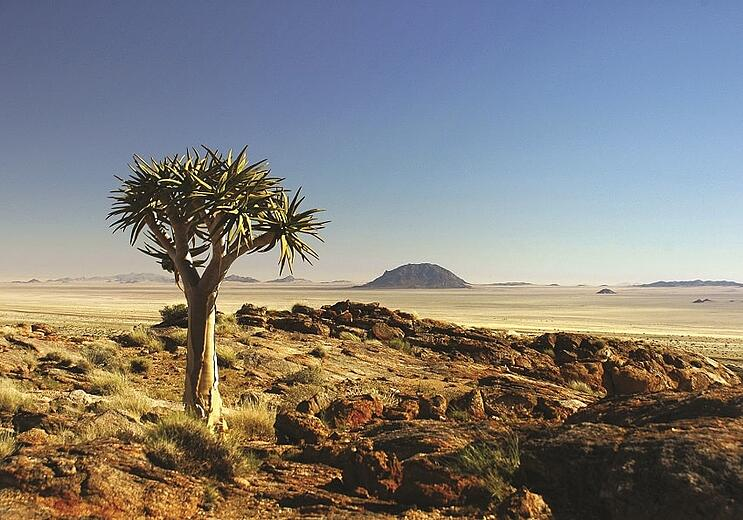 Rights to Gondwana Collection Namibia