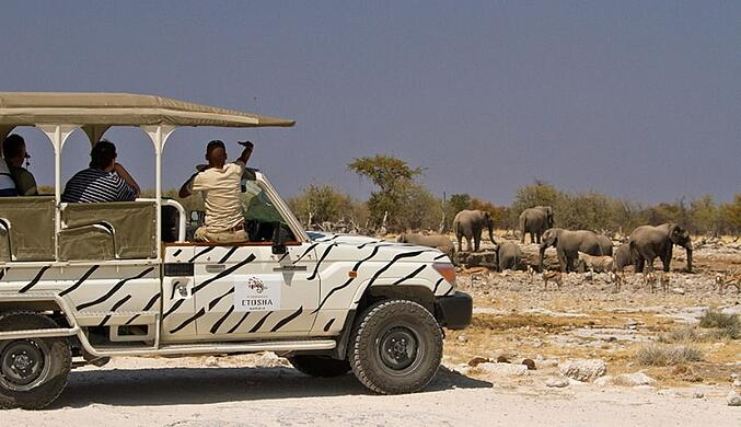 Etosha-Safari-Lodge-Gondwana