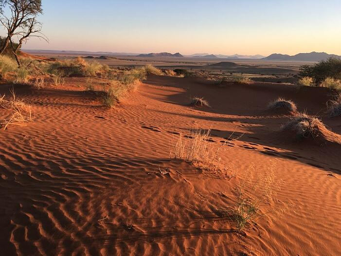 The view from the Dune Star Camp