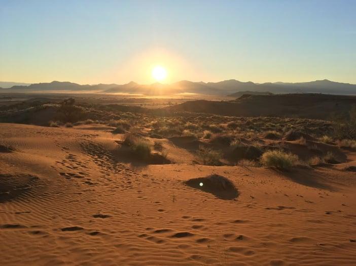 The beautiful Namib