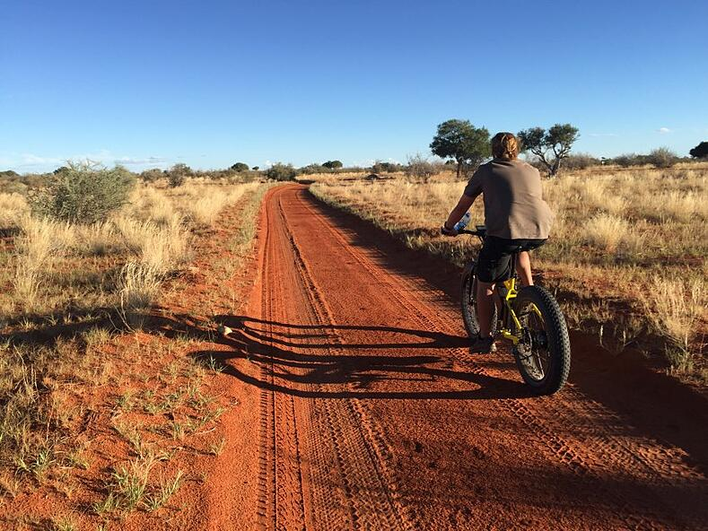 """""""Guests can now rent electric fat-bikes to pedal through the Gondwana Kalahari Park on selected routes."""""""