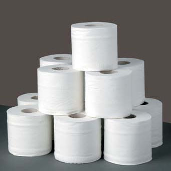Image: Toilet paper blog