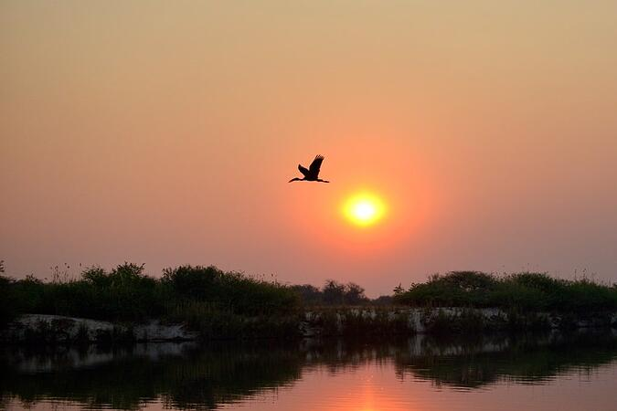 Sunset - Image by Helmut Gries