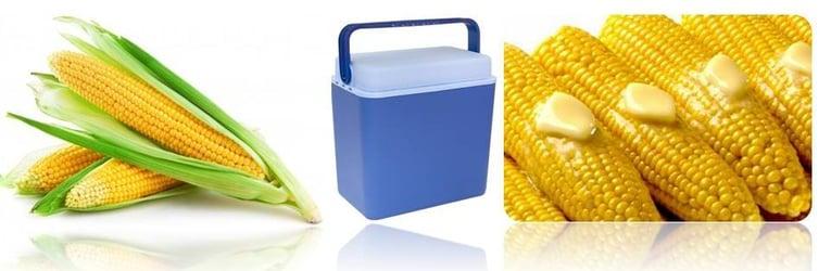 Corn cobs in a cooler box