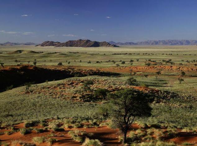 View at the Namib Dune Star Camp