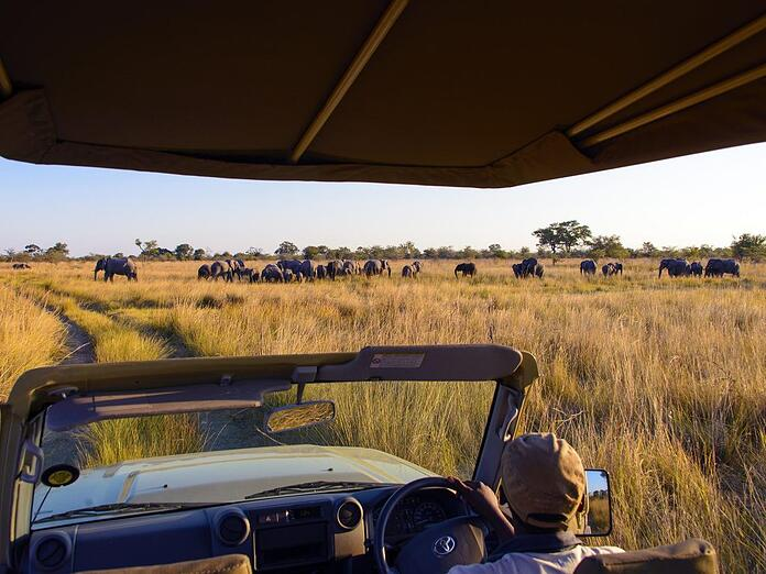 Game drive in the Bwabwata National Park ©Gondwana Collection Namibia