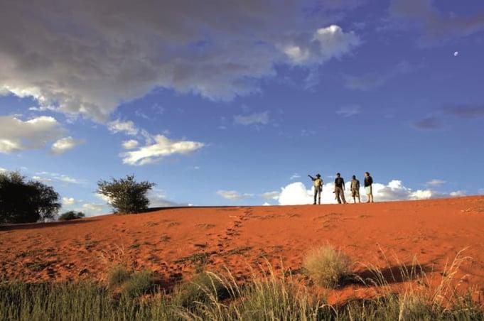 Kalahari Dune