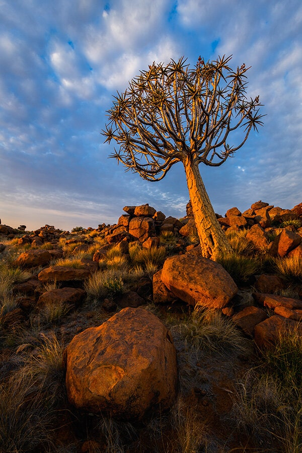 Rights to Outdoor photographer