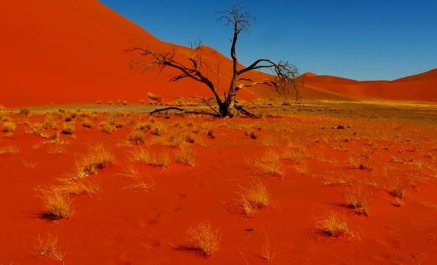 Kalahari sand - Image: www.southern destination.com