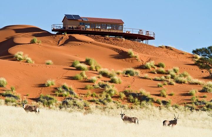 Namib Dune Star Camp. Image : Scott Hurd