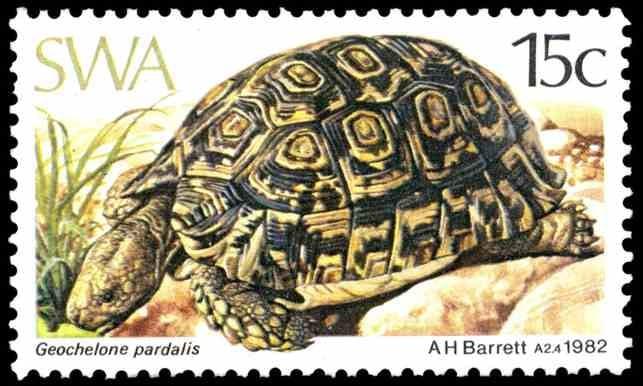Geochelone pardalis (Leopard tortoise), issued in 1982, artist: Arthur Howard Barrett