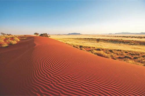 500x333q70Go-Big-Namibia-Self-Drive-Safari