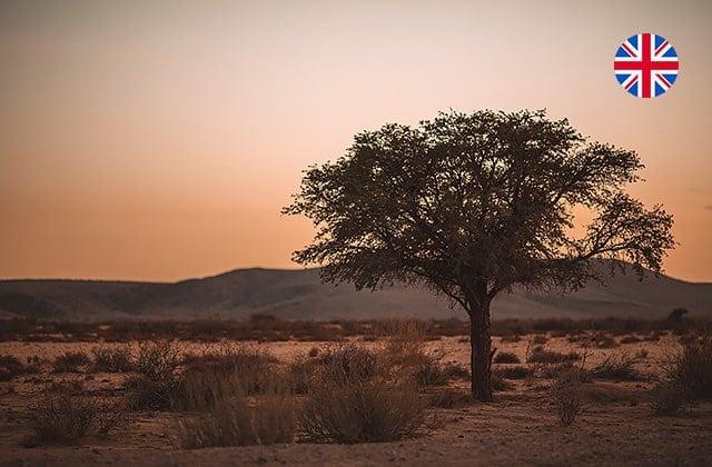 Gondwana-Collection-Namibian-News