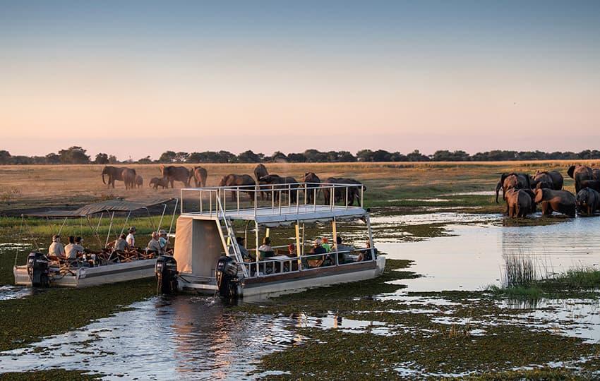 Boat trip in the Zambezi Region