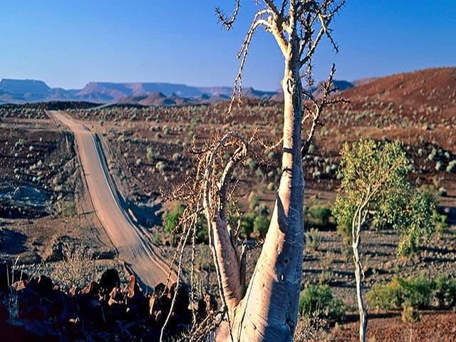 Gondwana-Collection-Damaraland-Experience