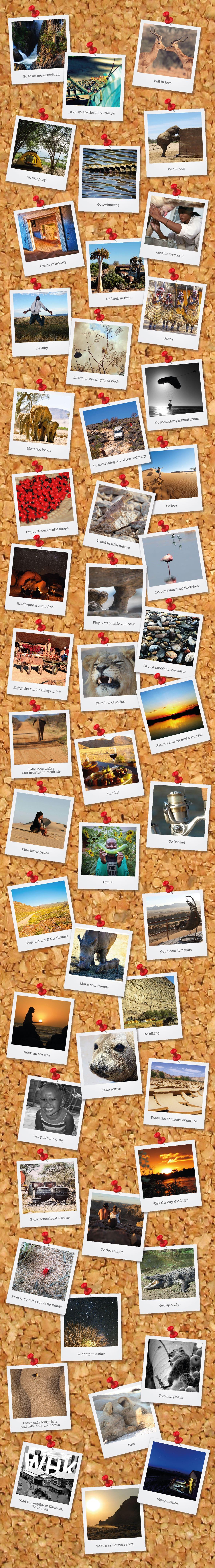 50 shades of travel pin board