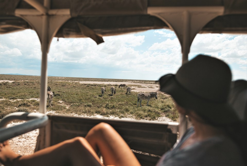 What kind of experience would suit me best in Namibia?
