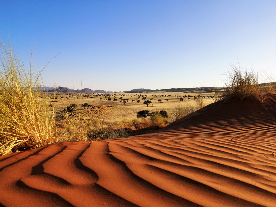 In love with the planet this Valentine's Day – Trending in Namibia