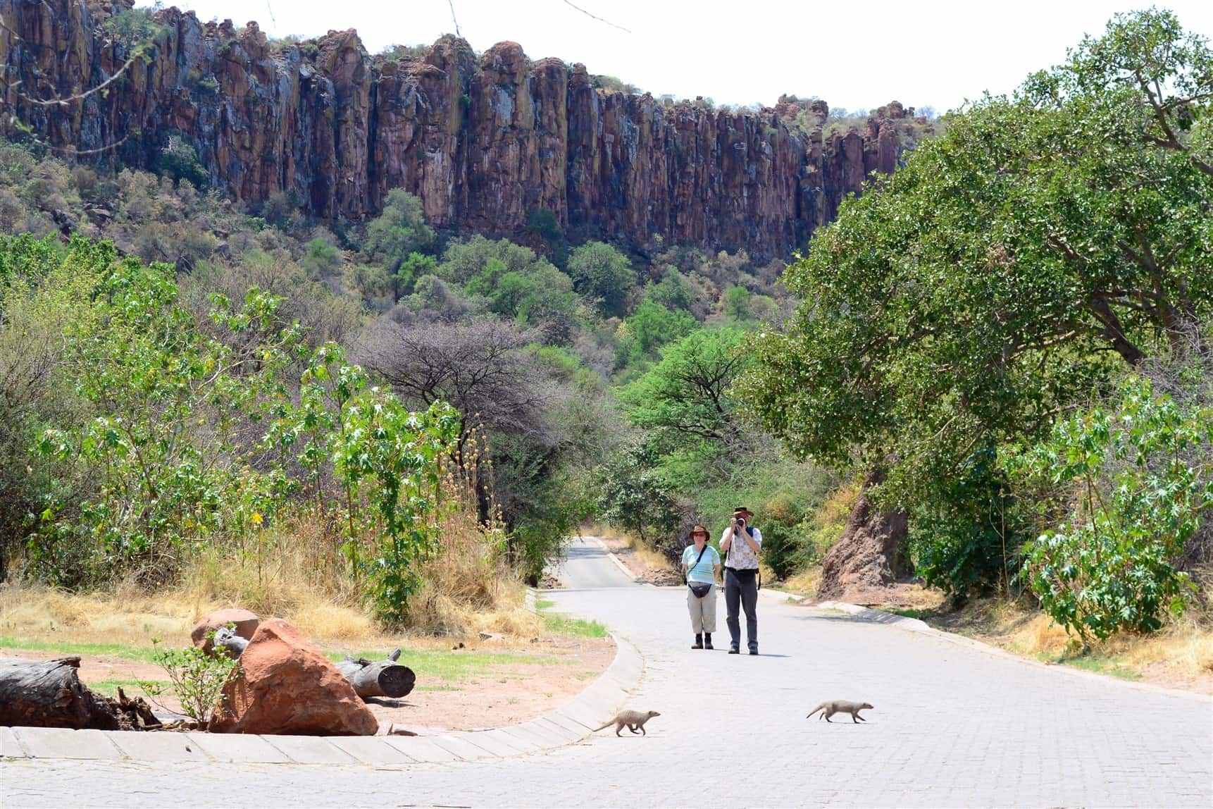 Why is Waterberg Plateau Park in Namibia so extraordinary?
