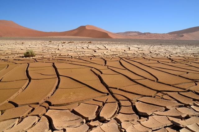 Cracked desert plain