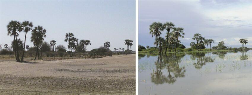 Iishana of north-central Namibia
