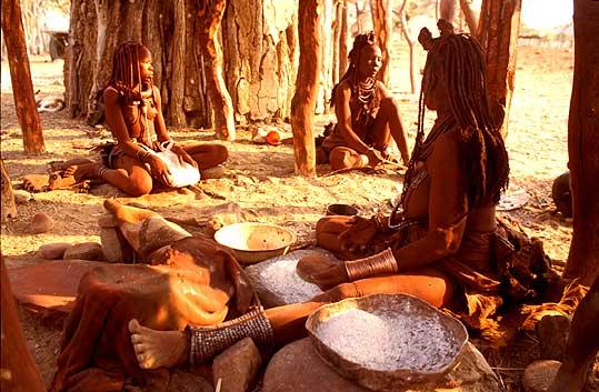 Makalani Nut