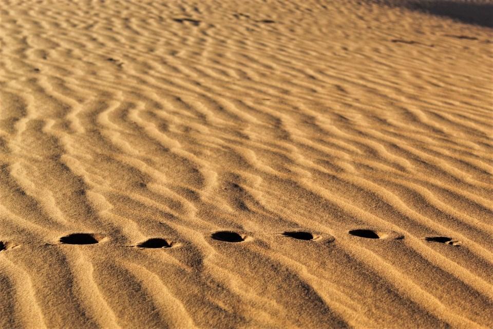 Activities to enjoy at Gondwana's Namib Desert Collection