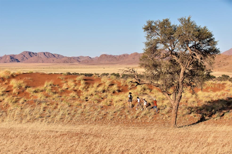 What are some benefits of travelling to Namibia?