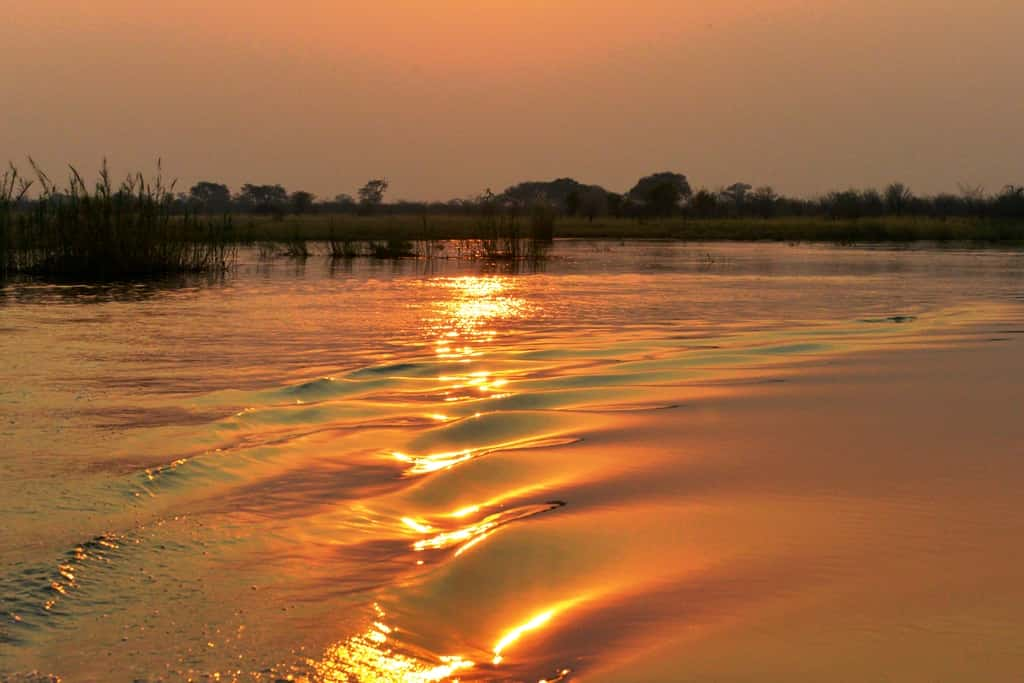 The riches of the river & the Kwando Queen