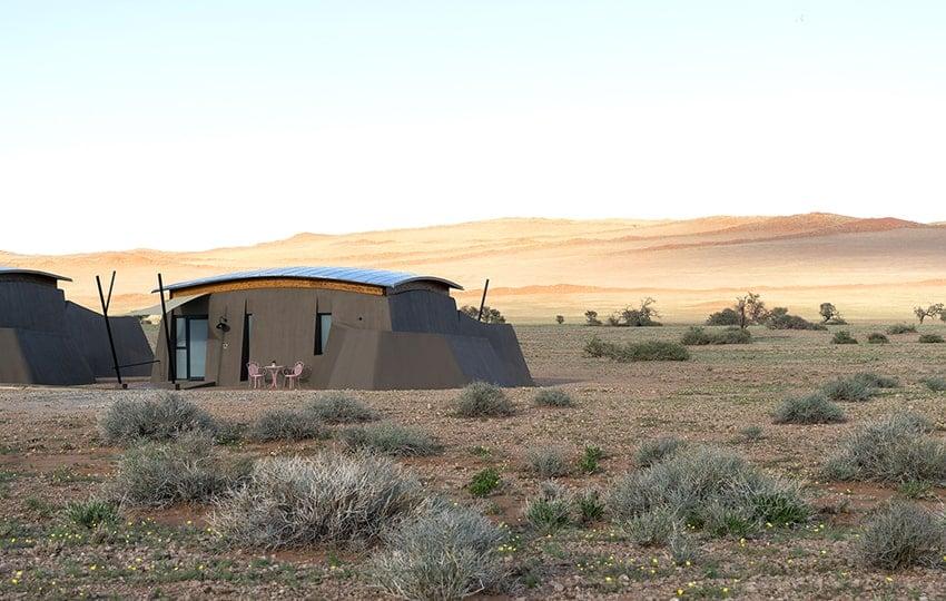 The Desert Grace