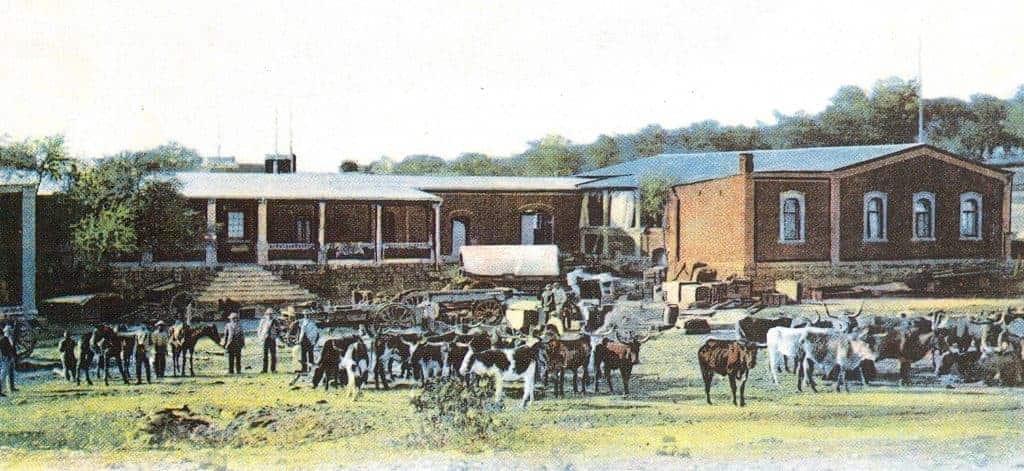By ox wagon through the arid Kalahari