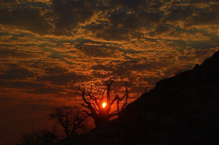 Namib Naukluft Sunset