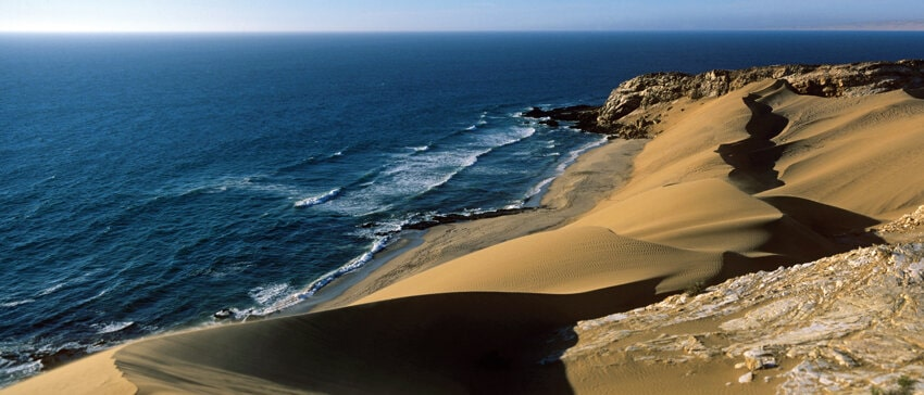 Why is it called the Skeleton Coast?