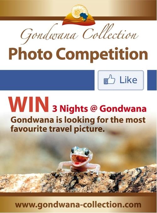 Gondwana Photo Competition