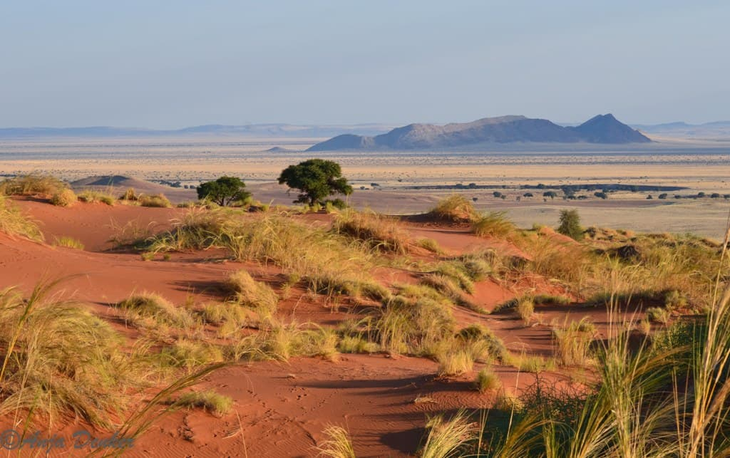 Here are 10 Reasons to never visit Namibia