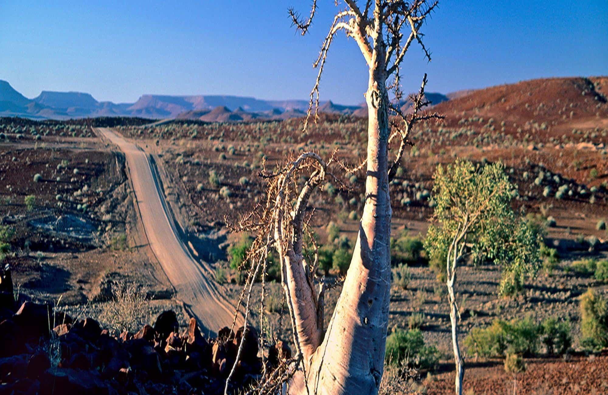 Damaraland view